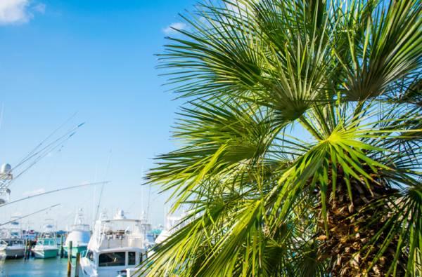 Enjoy all of the activities that await in Port Aransas
